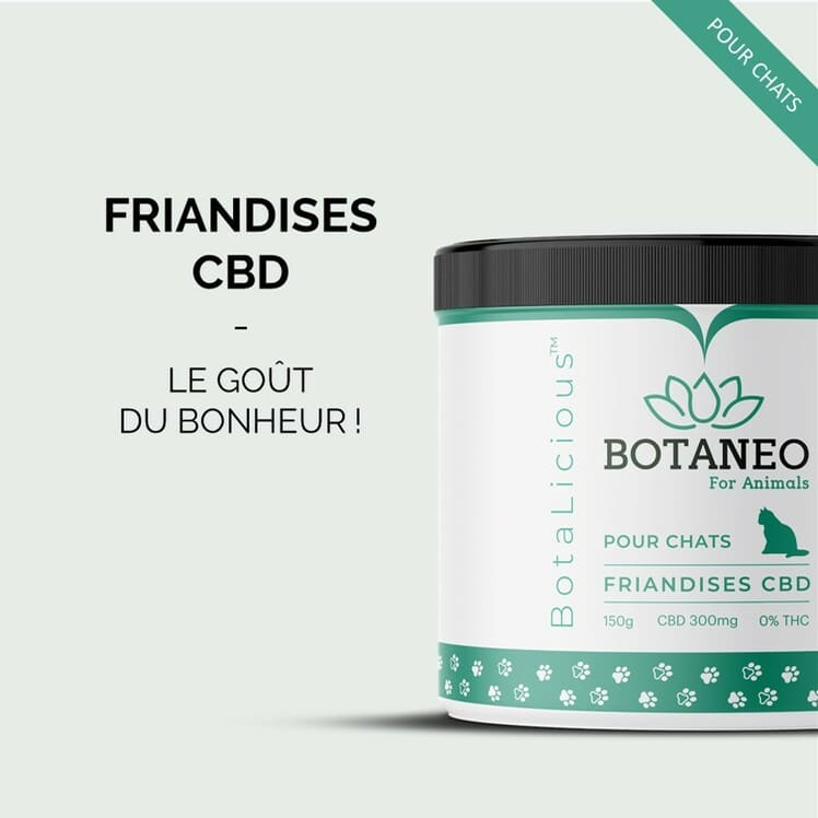 BOTANEO Friandise chat