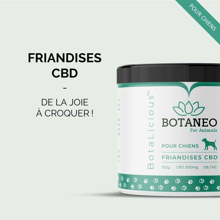 BOTANEO Friandise chien