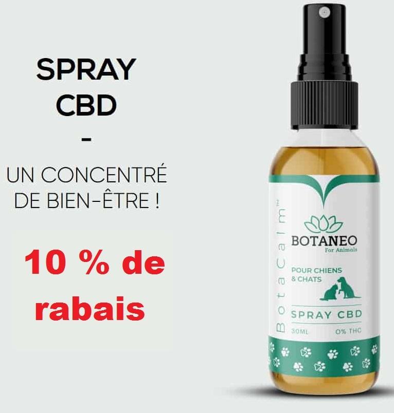 Code Promo BOTANEO 10% – Spray pour chien et chat